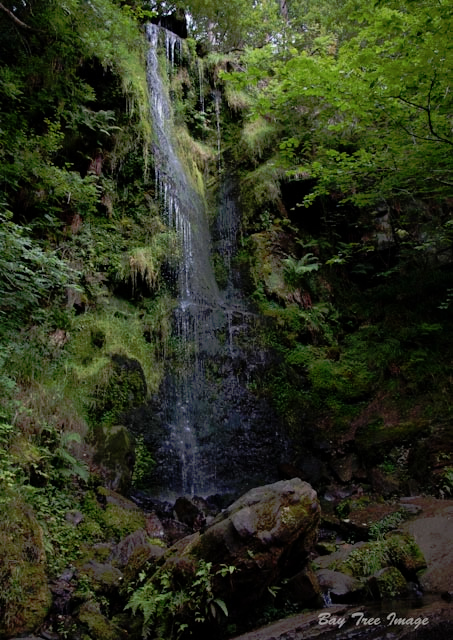 Mallyan Spout 1