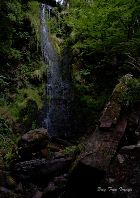 Mallyan Spout 2