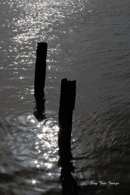 River Humber posts